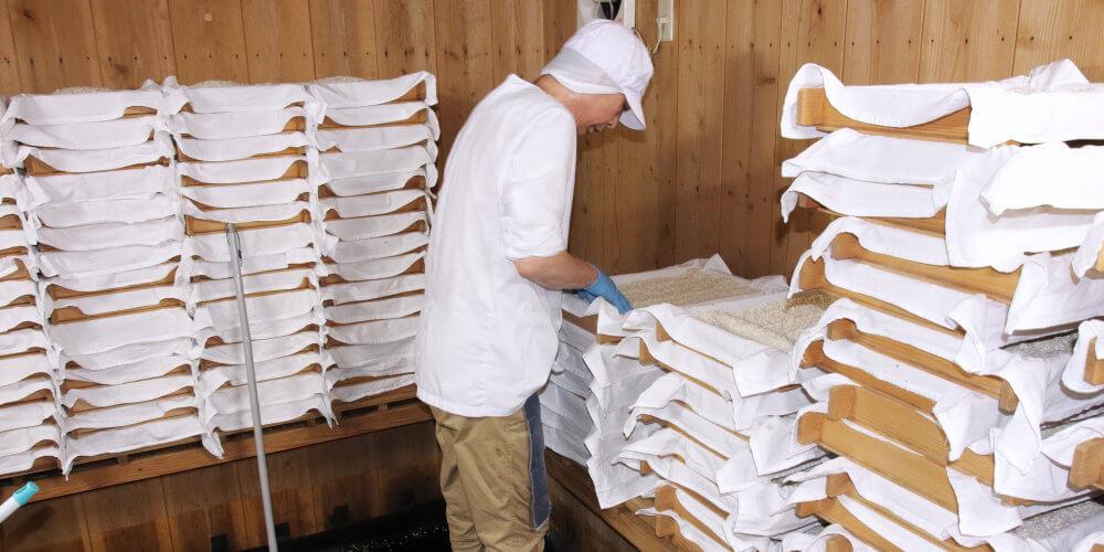 白味噌の麹蓋製法による手作り米麹づくり。